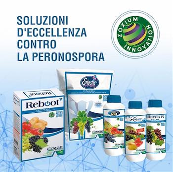 Soluzioni Peronospora