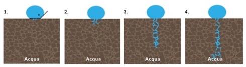 Andamento dell'acqua nei suoli idrofobici