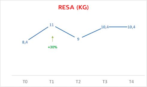 Grafico sulla Resa