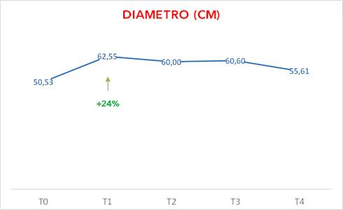 Grafico sul Diametro