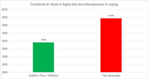 Grafico sui nitrati