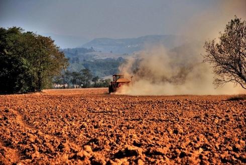 Sardegna, terreno con sintomi di desertificazione