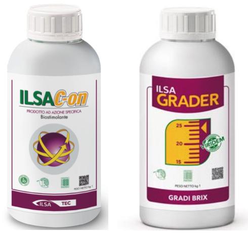 IlsaC-On e IlsaGrader