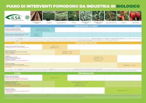 Piano di interventi pomodoro da industria