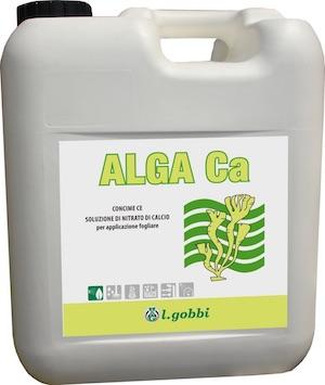 Alga Ca - L.Gobbi