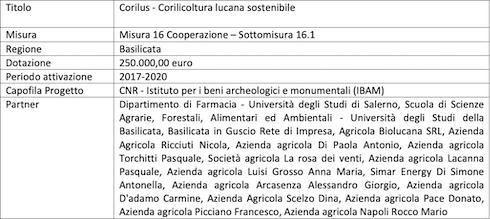 Progetto Corilus