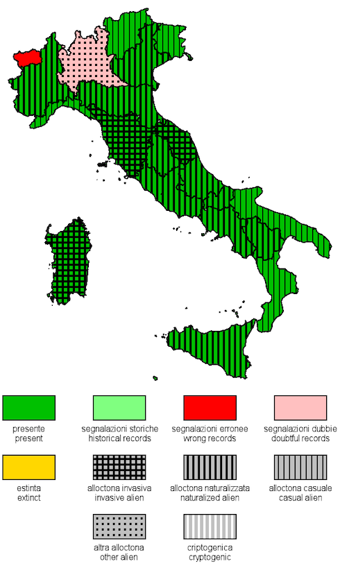 Distribuzione di Amaranthus spp. in Italia