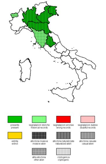Distribuzione del cartamo in Italia
