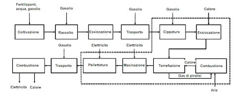 Flussi di materia ed energia per l'alimentazione di una centrale termoelettrica con biomassa di pioppo torrefatta