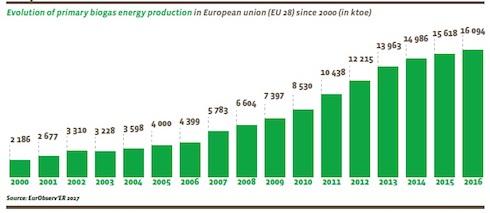 Andamento della produzione energetica da biogas nell'Ue