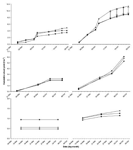 Grafico: Produzione di germogli di bambù in condizioni di minima irrigazione (sinistra) e massima irrigazione (destra), con diversi apporti di N (punti quadrati 250 chilogrammi/ettaro, punti tondi 375 chilogrammi/ettaro, punti triangolari 500 kh/ettaro)