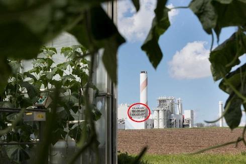 Vista d'insieme dell'impianto, dalla serra di coltivazione dei pomodori