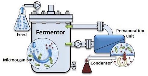 Processo ABE in continuo con separazione dei solventi mediante pervaporazione, un processo basato sull'utilizzo di membrane selettive