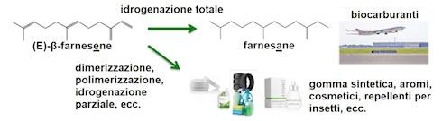 Produzione chimica flessibile a partire da E-ß-farnesene