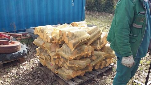 Prova di stoccaggio e confezionamento in campo di tronchetti di eucalipto, in modo che il prodotto sia pronto per la commercializzazione