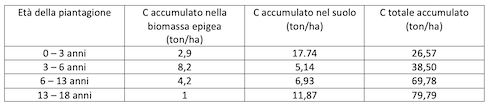 Tabella: Accumulo di C nel suolo nelle piantagioni di C. equisetifolia