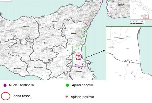 Attuale situazione Aethina in Sicilia
