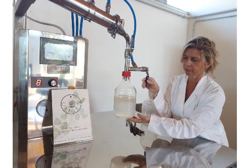 Elena Giannini in laboratorio