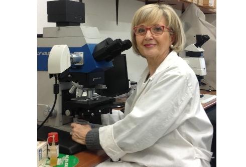 Manuela Giovannetti al microscopio nel suo laboratorio
