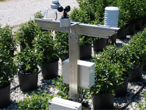 Vivaismo risparmiare acqua si pu agronotizie for Impianto irrigazione vasi