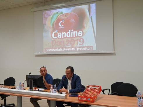 Regalyou Candine, nuova varietà di mela prodotta e commercializzata in esclusiva per Apofruit