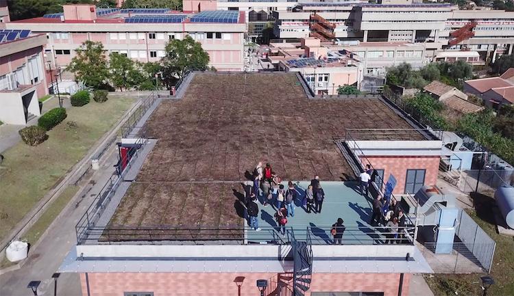Il tetto verde alla Cittadella universitaria di Catania