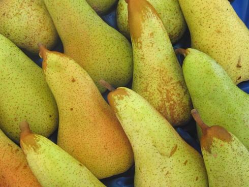 Frutti di Abate Fetel in una cassetta pronte per essere vendute e consumate