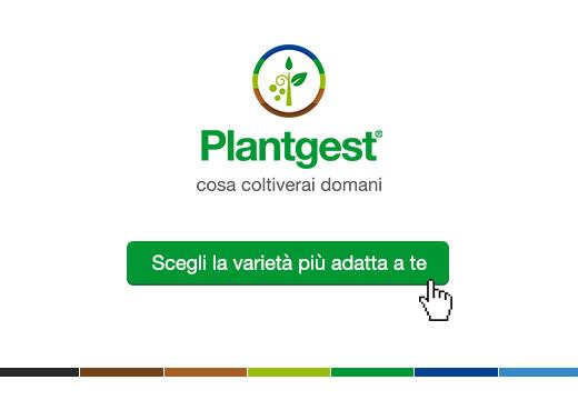 Plantgest, scegli la varietà più adatta a te. Clicca qui e inizia a cercare