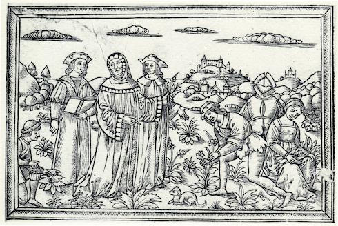 Giardino della Minerva: Matteo Silvatico fondò il primo Giardino dei semplici della Storia della medicina