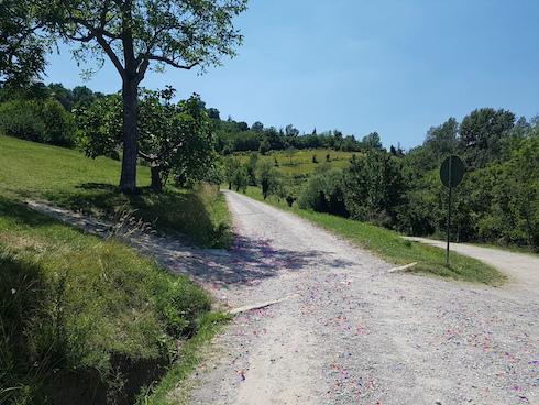 La strada carraia principale del parco con la ghiaia colorata di coriandoli di plastica dopo un festeggiamento