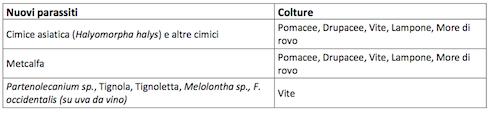 Tabella di estensione su nuovi parassiti di Epik SL di Sipcam Italia