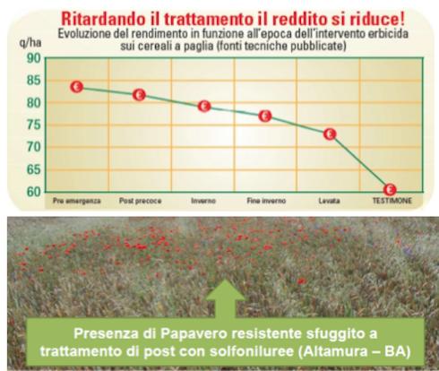 grafico ritardamento del trattamento