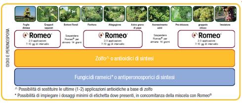 Tabella prodotto Romeo