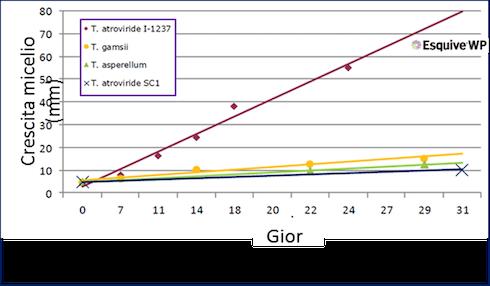 Grafico Esquive WP