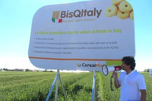 Dario Manuello, field crop expert cereali e riso - Syngenta