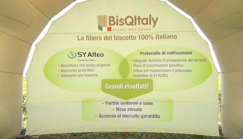 progetto BisQItaly - frumento grano tenero SY Alteo - Syngenta
