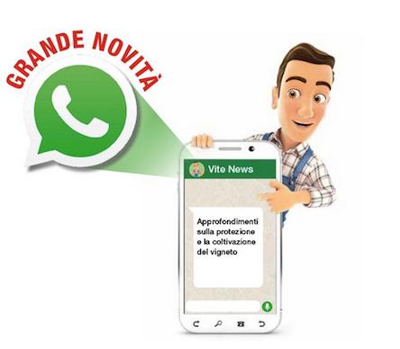 Aggiornamento su whatsapp