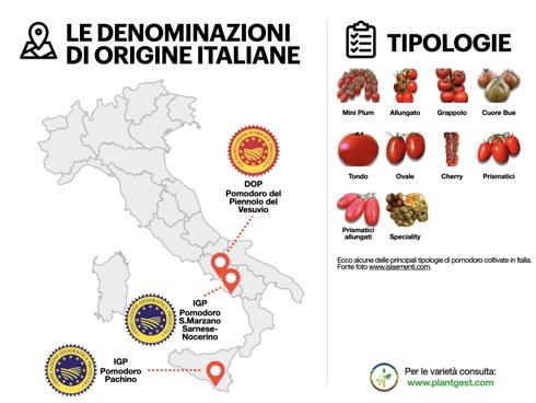 Pomodoro, tante le tipologie coltivate e diverse le denominazioni di origine