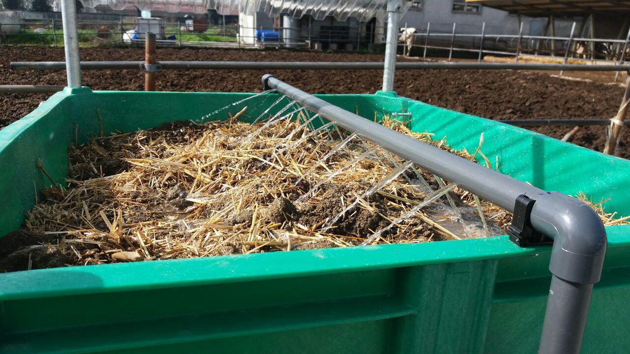 La fase di irrigazione del substrato