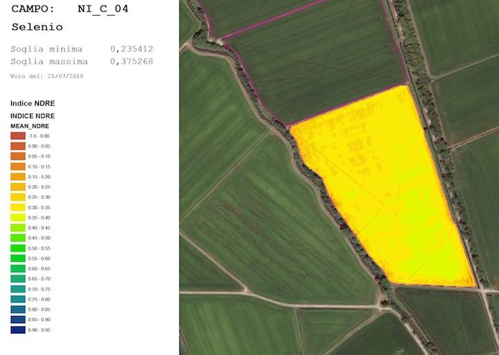 Una mappa di vigore generata a aprtire dalle fotografie scattate da un drone. In giallo le aree a maggiore vigoria, in rosso quelle a minore
