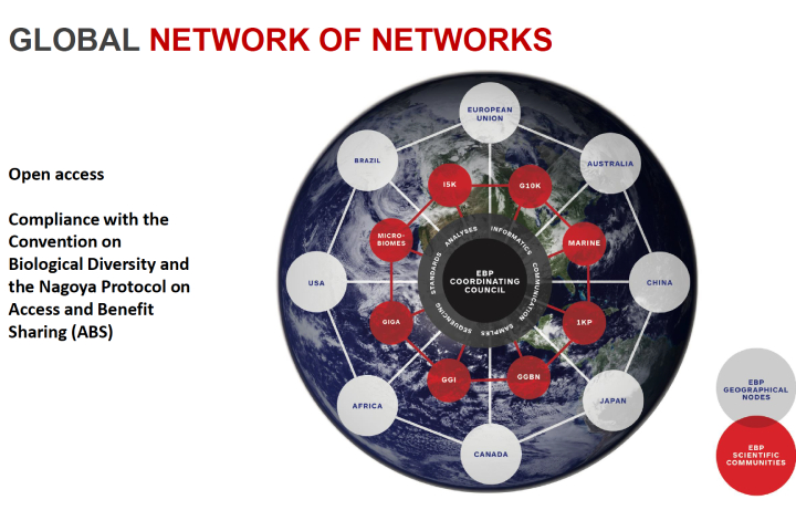 Global network of networks