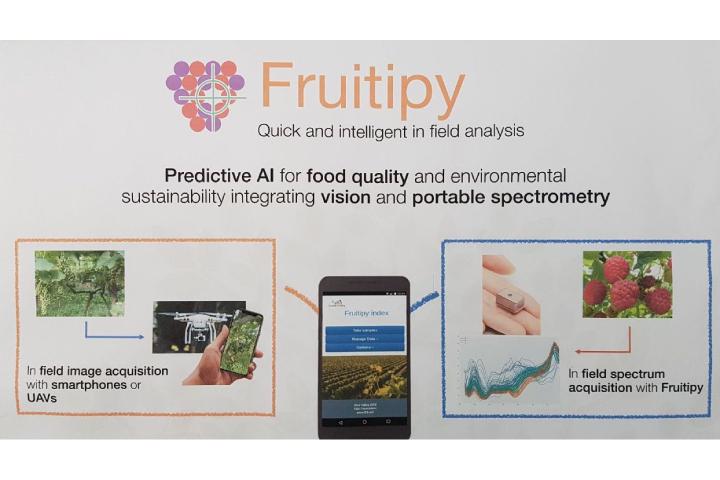 Fruitipy