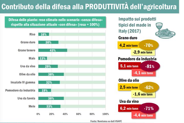 Contributo della difesa alla produttività dell'agricoltura