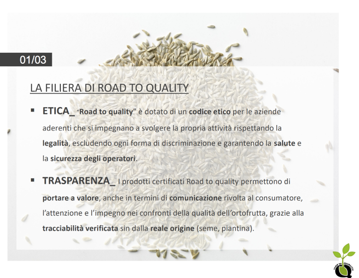 La filiera di Road to quality