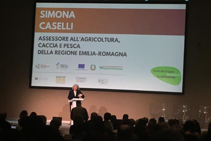 Simona Caselli nel corso del convegno