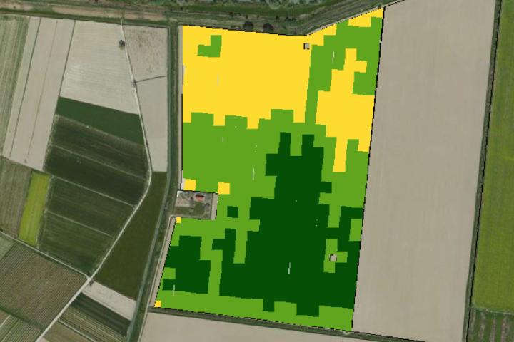 Un esempio di mappa di produzione. In verde scuro le aree a maggiore produzione, in giallo quelle a minore