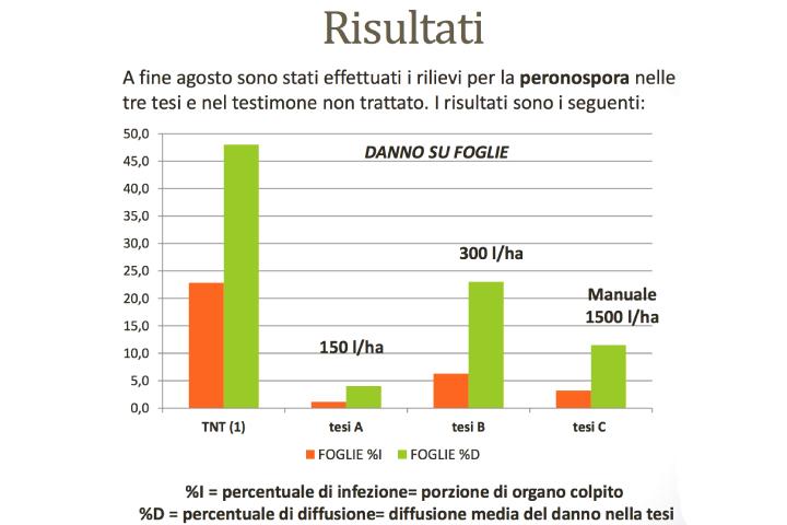 Grafico dei risultati
