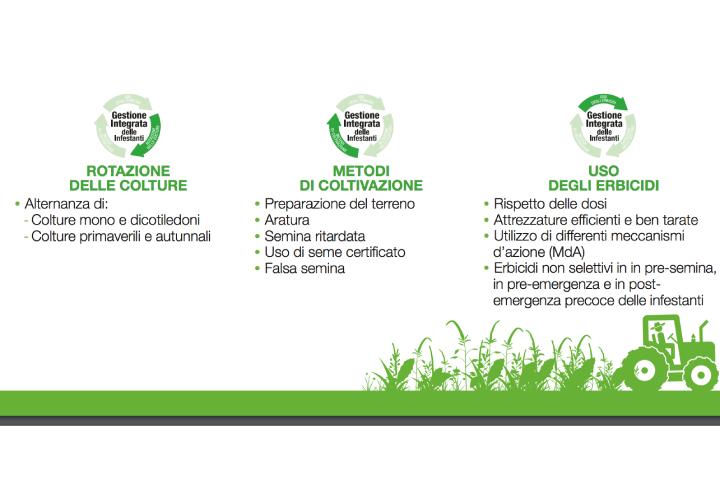 Schema: Rotazione delle colture, Metodi di coltivazione e Uso degli erbicidi