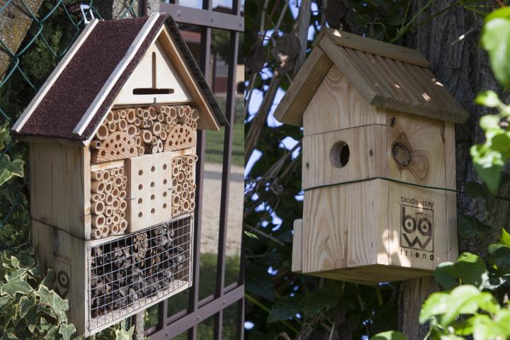Insecto hotel (a sinistra) e bat box (a destra) installati presso la Bayer Forward Farm