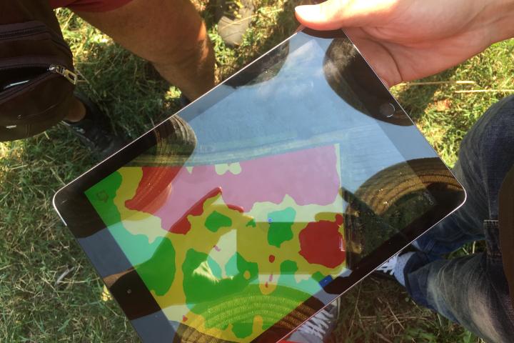 Un esempio di mappa di vigore ottenuta grazie ai dati raccolti dal drone